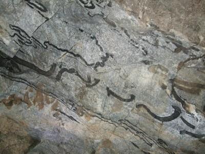 Detta är inte gammal skrift utan små, vackert deformerade asklager i kalkstenen.