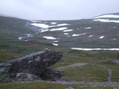 Visst ser stenen ut lite som en groda?