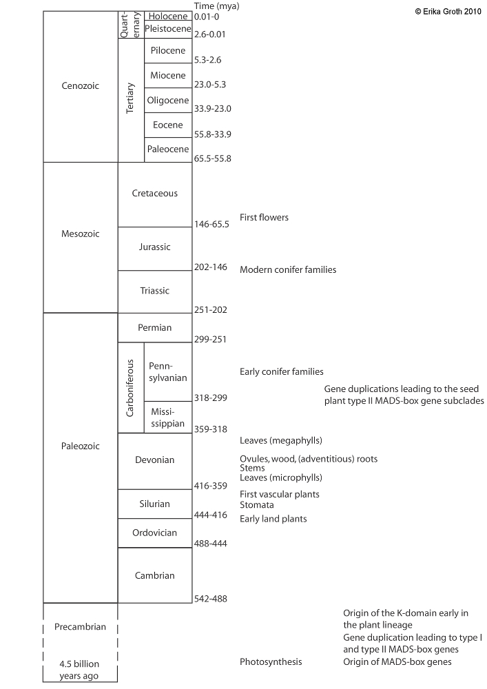 Groth_geological time scale_small