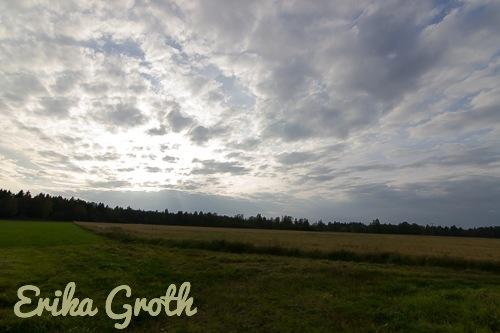 ErikaGroth-5596
