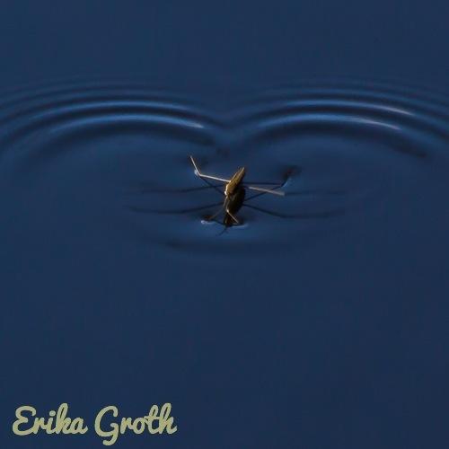 ErikaGroth-5616