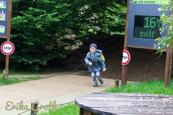Naturligtvis fanns det aktiviteter för barnen. Kan du springa lika snabbt som en gepard?
